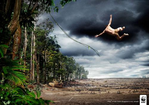 1wwf-adena-proteccio-dels-habitats-naturals.jpg