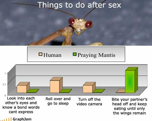 funny-graphs-after-sex2