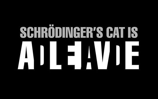 funny-Schrodinger-cat-dead-alive