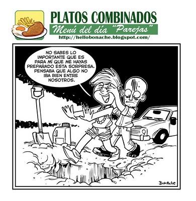 bonache_platos_combinados_10