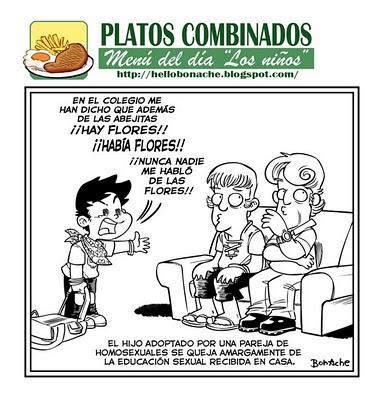 bonache_platos_combinados_2