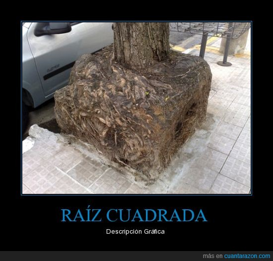 CR_276058_raiz_cuadrada