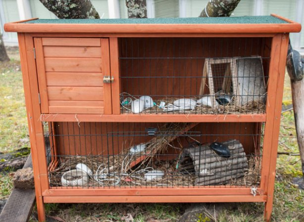 refugio-ratones-cern