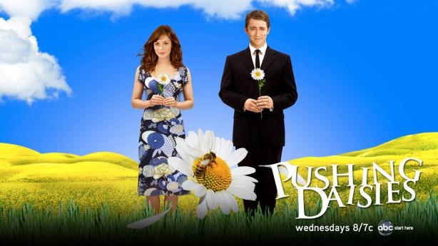 El món de Pushing Daisies pot semblar tan idíl·lic com un fons d'escriptori de Windows XP però la realitat pot ser cínica i plena d'humor negre.